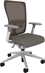 Haworth Zody High Performance Office Chair with Ergonomic Adjustments and Flexible Mesh Back, Warm Neutral