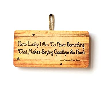 Ps Pet Tags How Lucky I Am Winnie The Pooh Quote Novelty Hanging