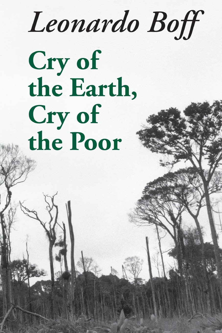 CRY OF THE EARTH (Ecology & Justice): Amazon.co.uk: BOFF: 9781570751363:  Books