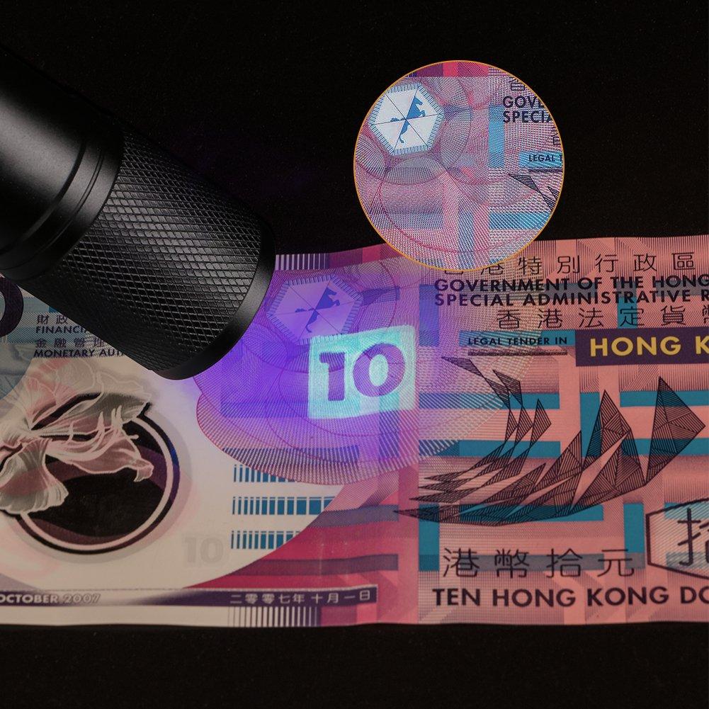Pilas no Incluidas Linterna UV LED Chanhan Linterna de luz Negra antorcha Ultravioleta ltravioleta