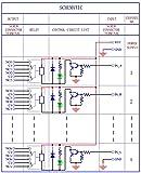 Electronics-Salon 2 DPDT Signal Relay Module