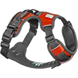 Embark Adventure Dog Harness, Easy On and Off with Front and Back Leash Attachments & Control Handle - No Pull Training…