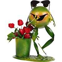 Wonderland Gangnam Frog with Specs Planter/Pot (Gift Item, Home Decor, Garden Planter, Kids Decor)