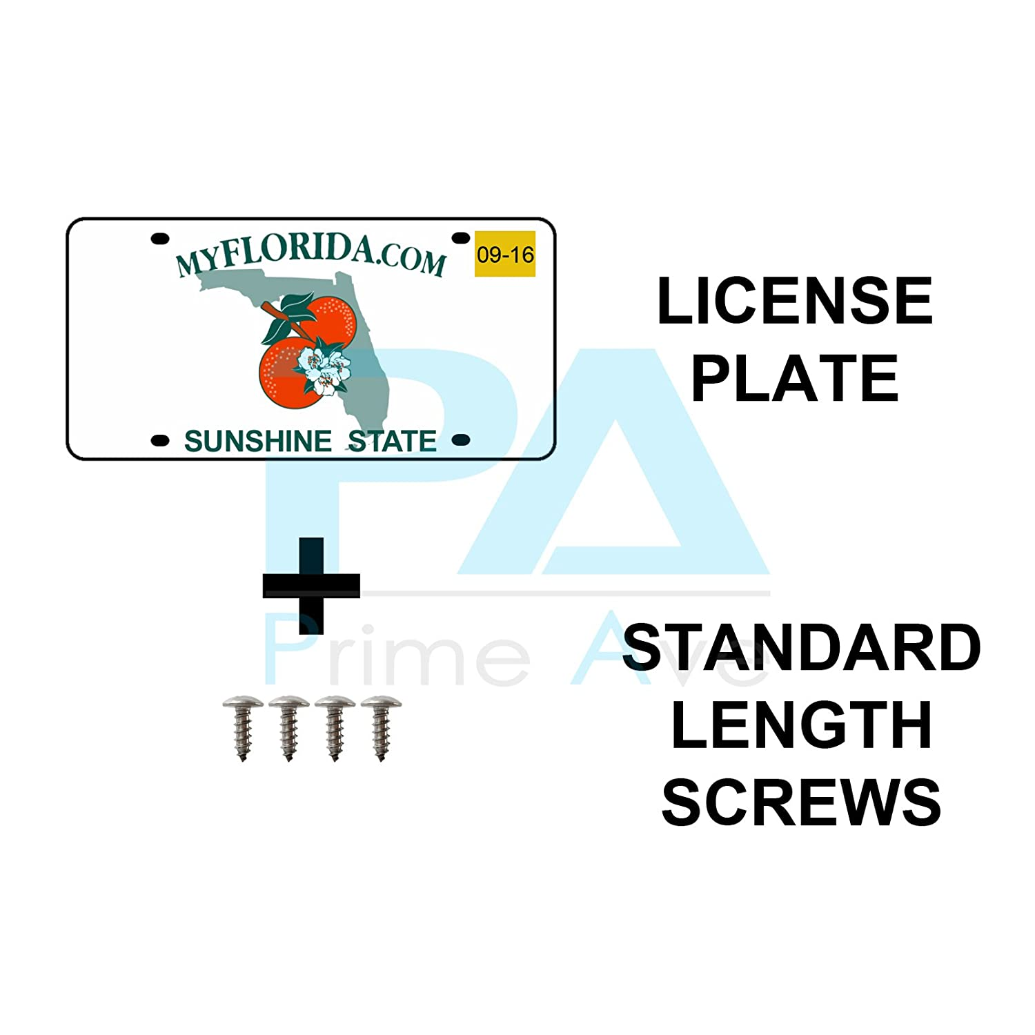 Audi Prime Ave Stainless Steel License Plate Screws Extended Length