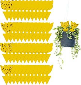 48-Pieces Stingmon Sticky Traps for Plants Fruit Fly and Fungus