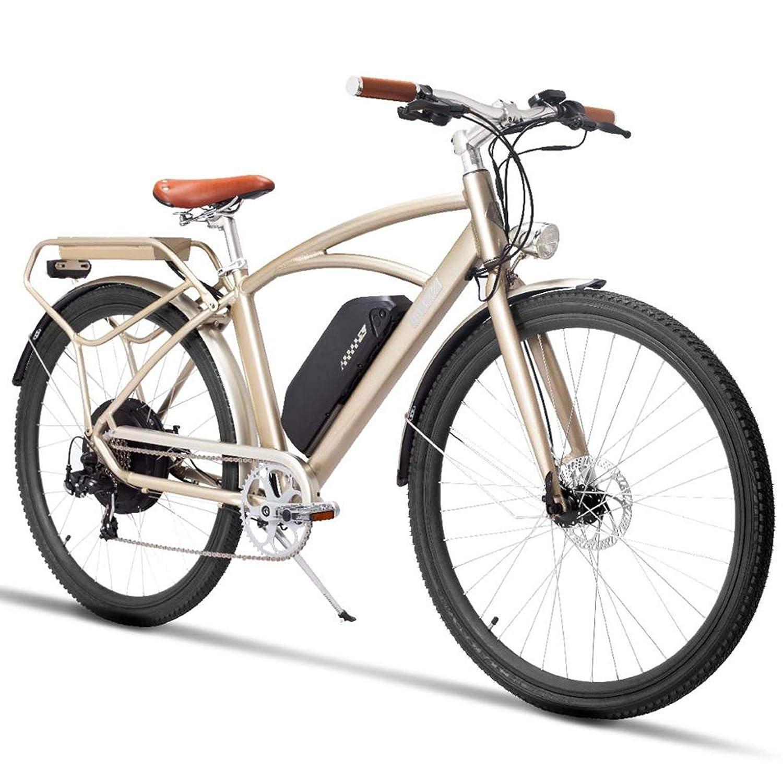 700C 高速電動アシスト自転車、都市自転車、750W強力なブラシレスモーター、48V 13Ahリチウム電池 B07JBKSLGC 48V 13Ah シャンパンゴールド シャンパンゴールド 48V 13Ah