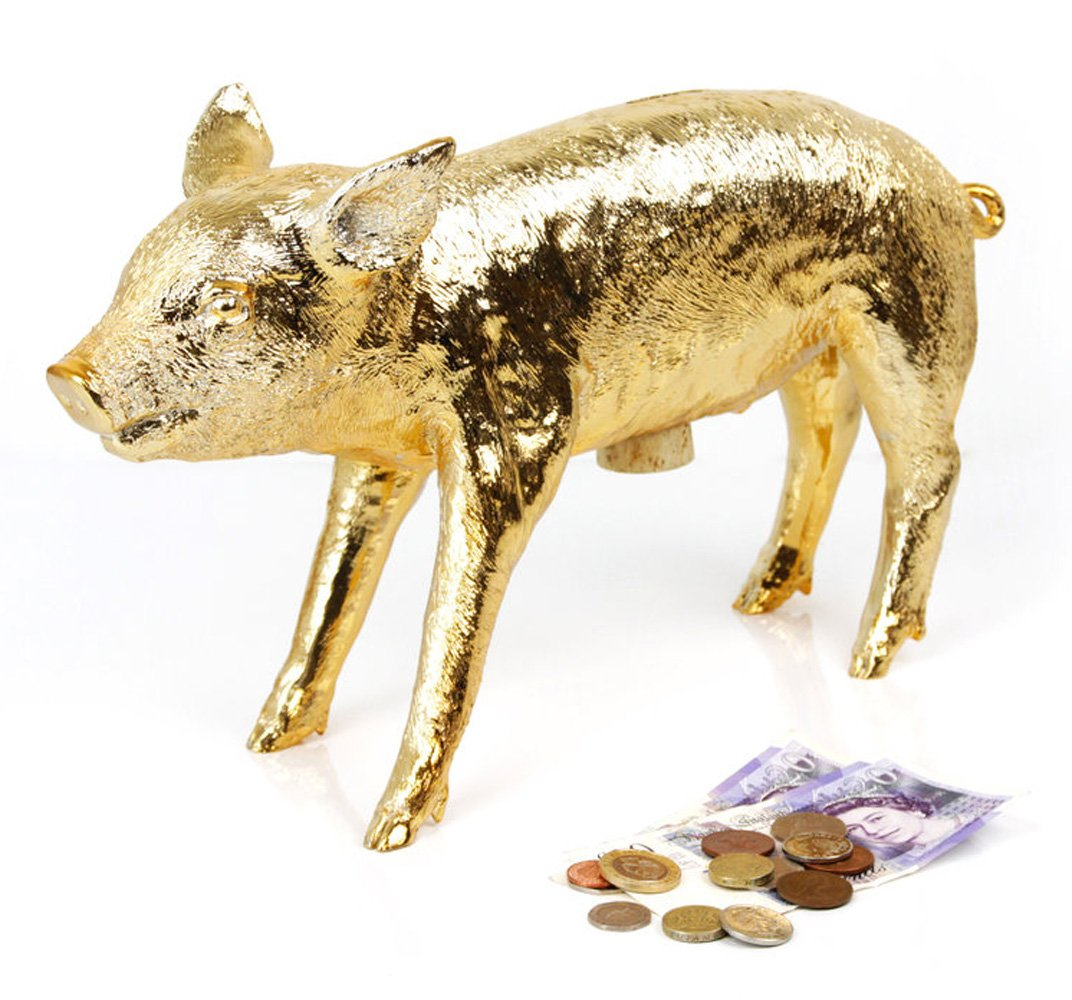 amazoncom areaware bank in the form of a pig gold chrome home  - amazoncom areaware bank in the form of a pig gold chrome home  kitchen