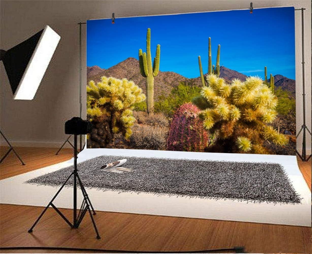8x6.5ft Solitude Weathered Canyon Sandstones Upward View Background for Photography Arizona Geologic Nature Scenery Backdrop Indoor Decoration Landscape Wallpaper Studio