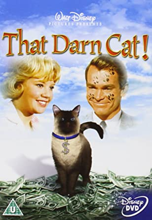 Image result for That Darn Cat! (1965)