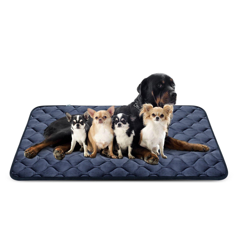 Hero Dog Letto Cuscino per Cani Taglia Grande Lavabile Lavabile Lavabile XXL - Lusso Morbido Tappeto Materasso Antiscivolo Imbottito 140x100 cm f0925b