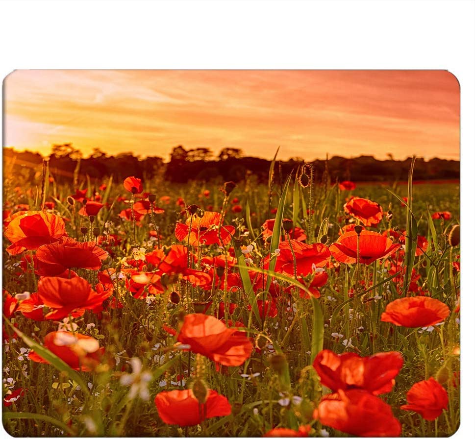 NICOKEE Poppy Rectangle Gaming Mousepad Poppy Flower Red Floral Landscape Mouse Pad Mouse Mat for Computer Desk Laptop Office 9.5 X 7.9 Inch Non-Slip Rubber