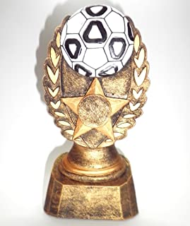 Personnalisé 16,5cm Trophée résine football