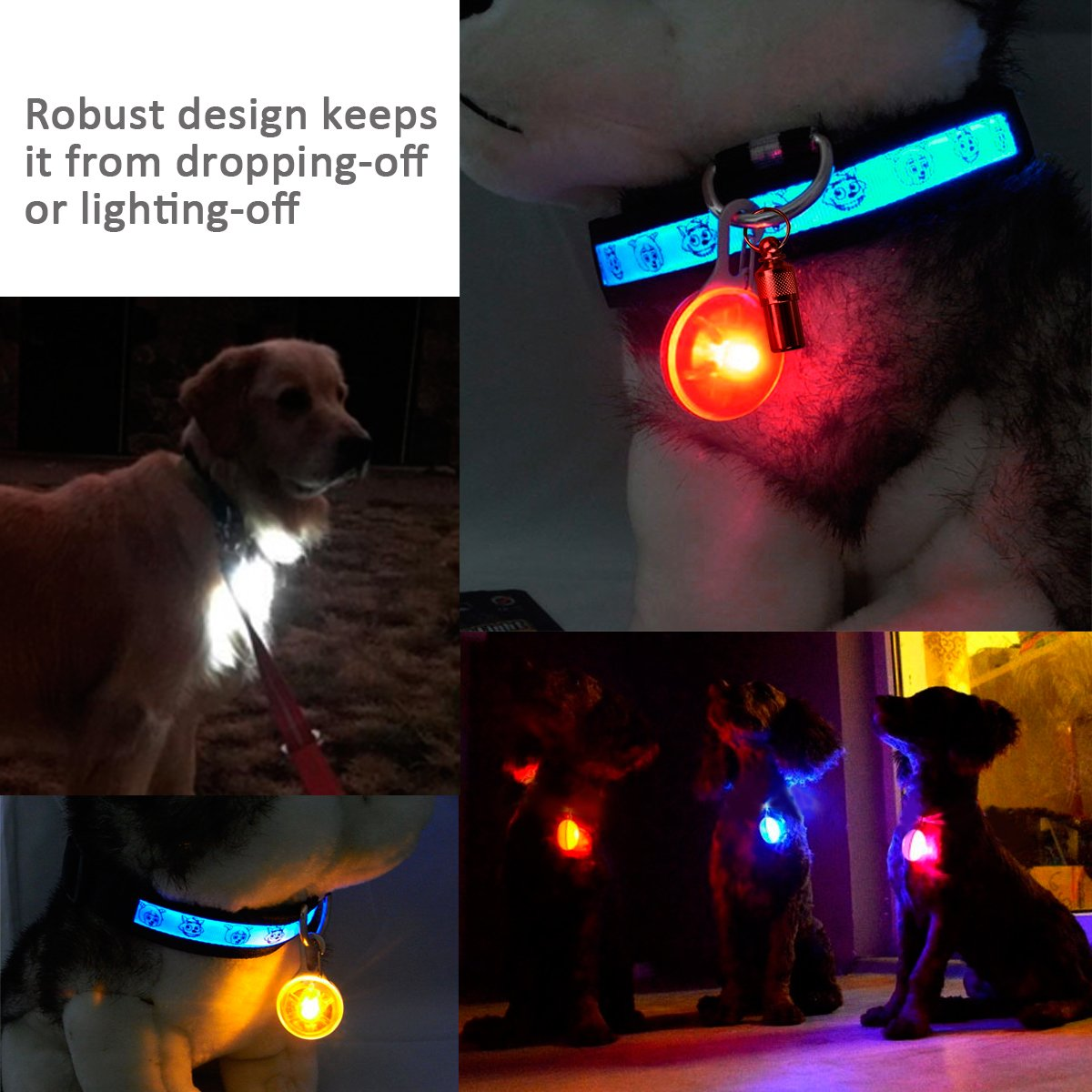 Morpilot Dog//Cat Clip-On Pet Collar Light Waterproof LED Dog Collar Charms Safety Lights Stainless Steel Carabiner Clasp Colorful