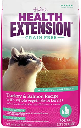 Health Extension Grain Free Turkey Salmon Recipe