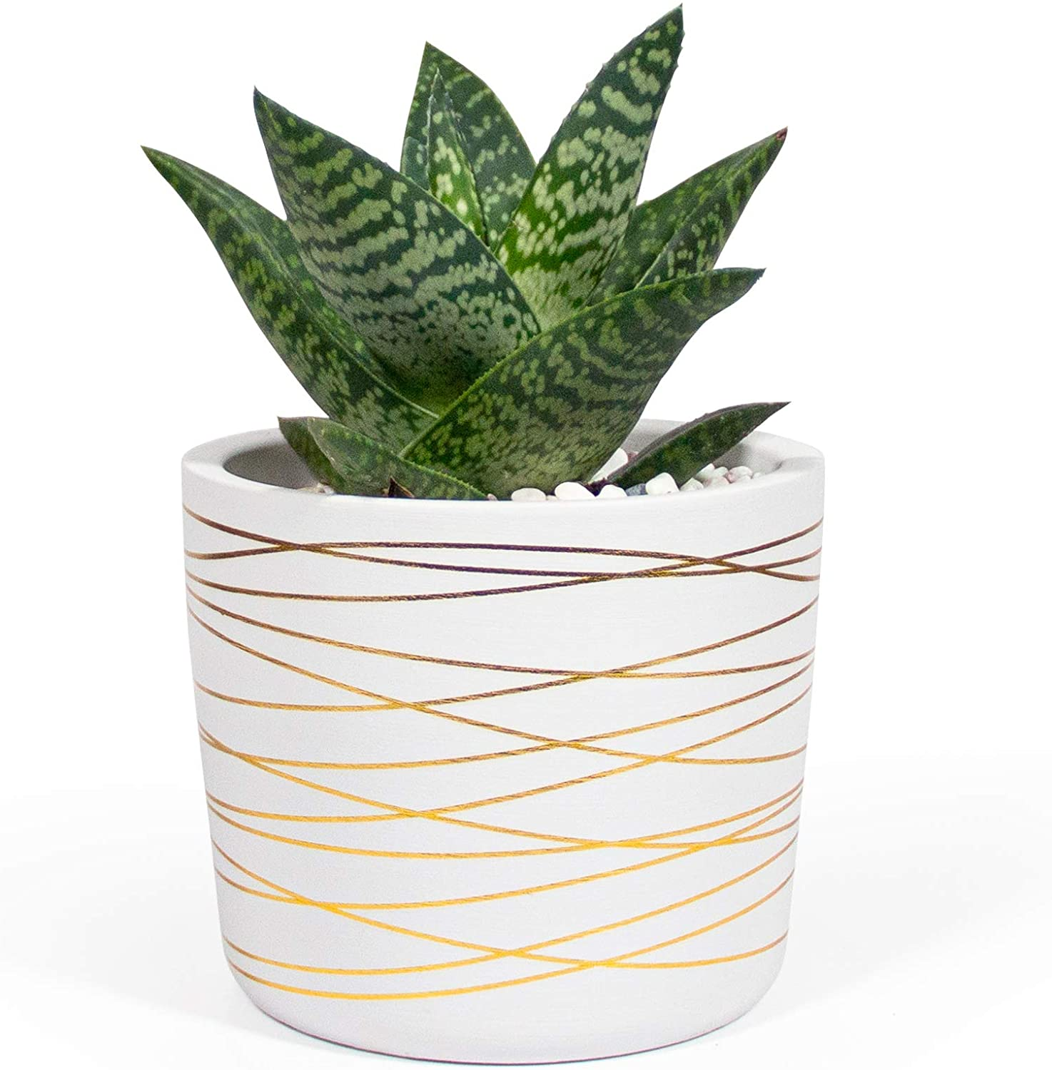 Willowy 6 Inch Ceramic Plant Pot - Small White Planter with Gold Stripes - Drainage Plug and Decorative Pebbles Included…