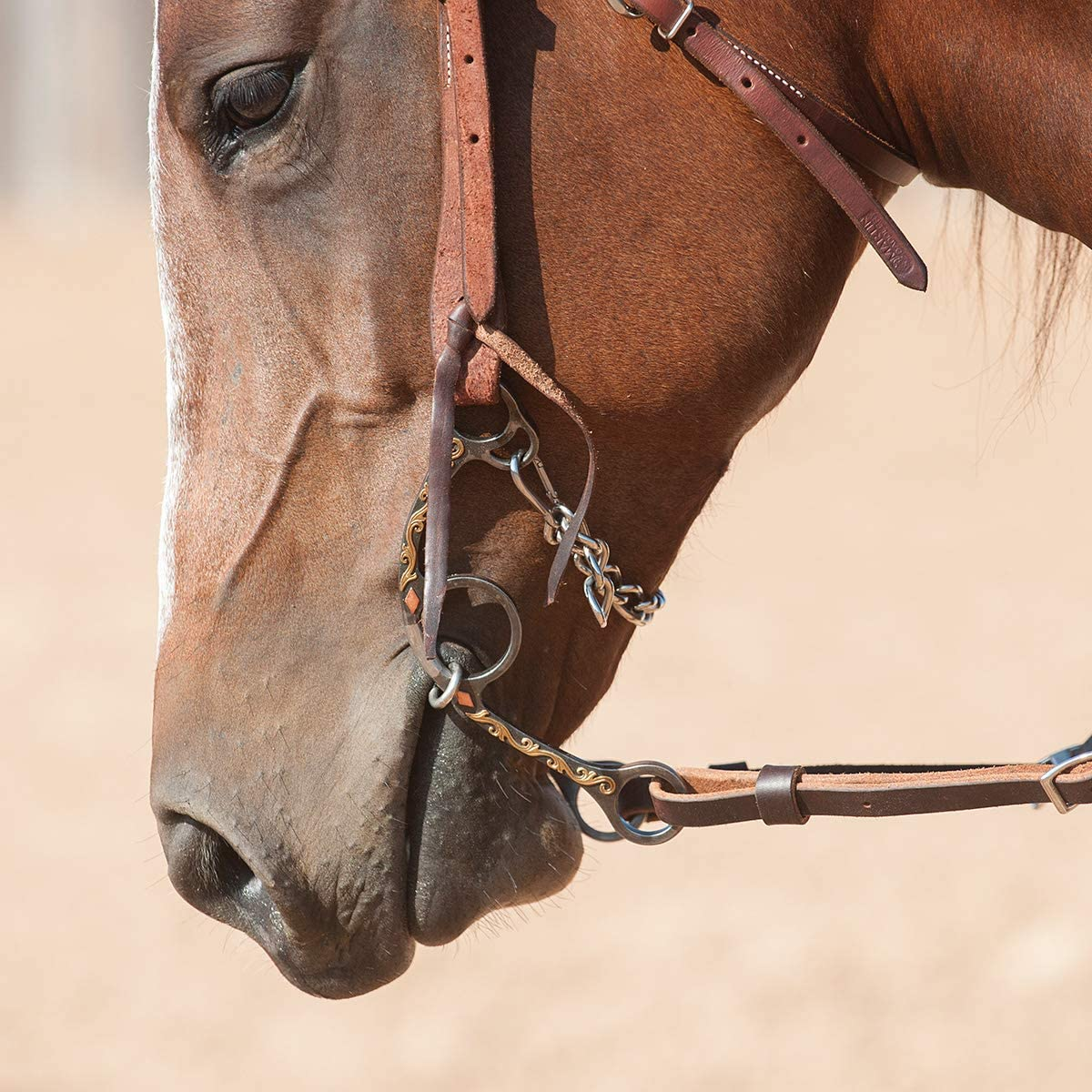 Classic Equine Sherry Cervi Dia Long Shank Dogbone Barrel Bit