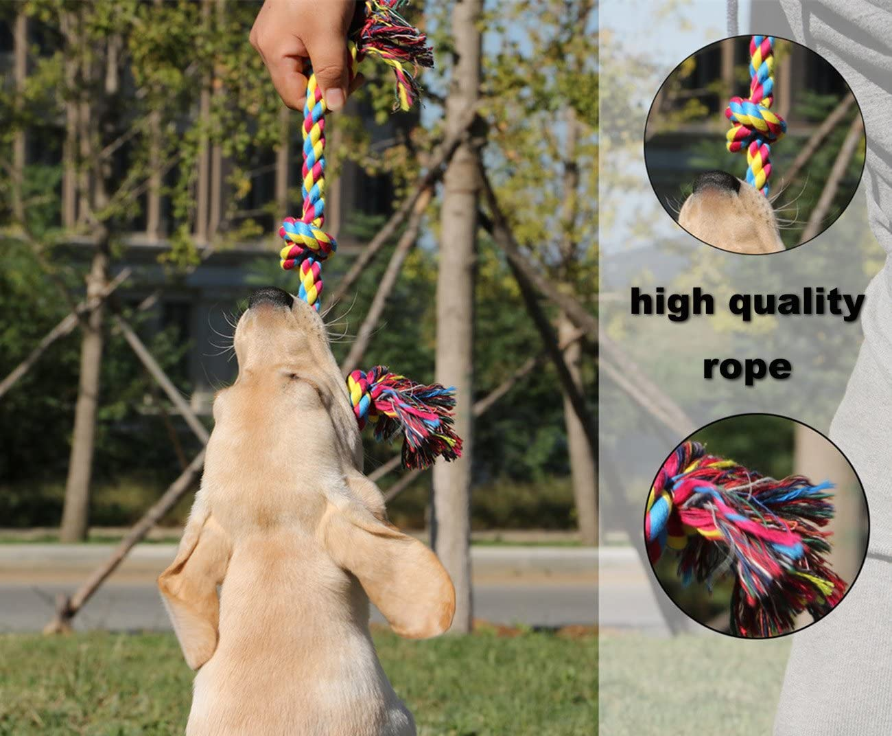 confezione di 3 corde da gioco per cani Tailmate resistenti e per giocare al tiro alla fune piccola, media e grande