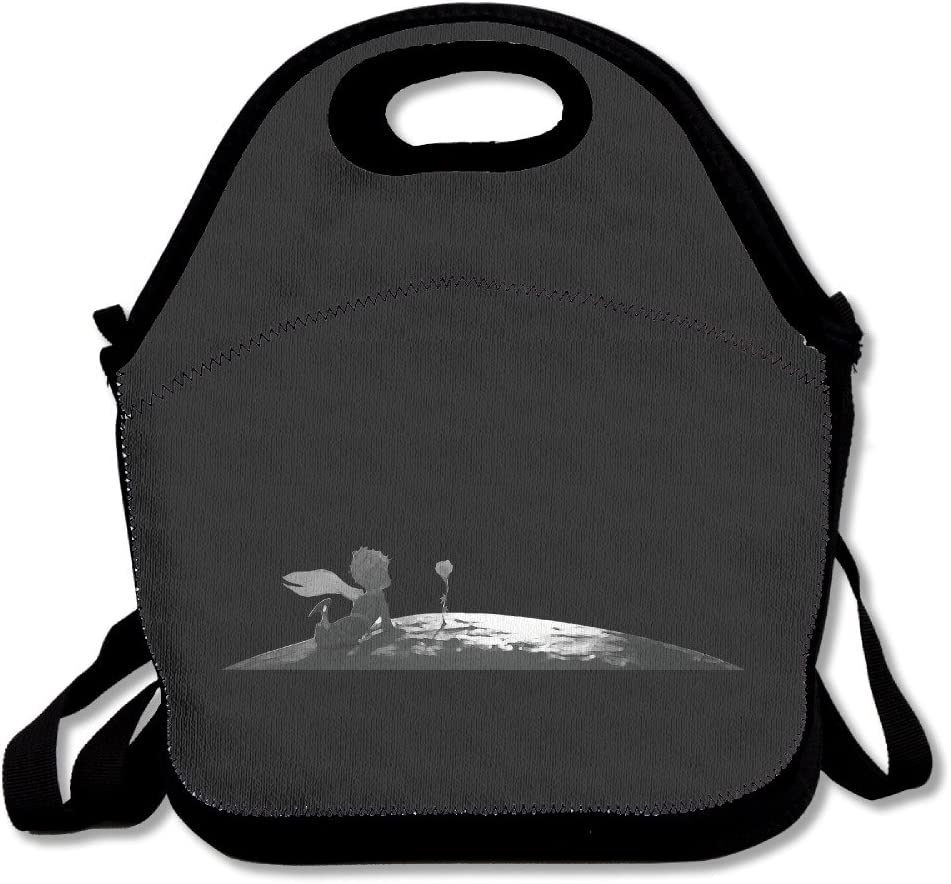 El Principito caja de almuerzo bolsa para niños y adultos, Lunch Tote Holder con correa ajustable para hombres mujeres niños niñas, este diseño para portátil, oblicuo Cruz, doble hombro: Amazon.es: Hogar
