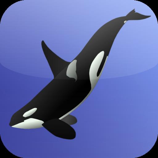 Killer Whale Games