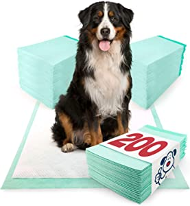 ValuePad Plus Puppy Pads, Extra Large 28x36 Inch, 200 Count - Premium Pee Pads for Dogs, Tear Resistant, Super Absorbent Polymer Gel Core, 5-Layer Design
