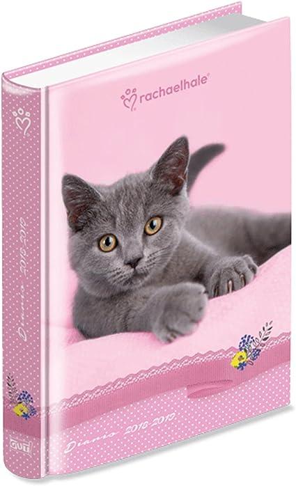 Diario Agenda Escolar Rachael Hale – Gato – Fecha cm14,7 X 19,7 ...
