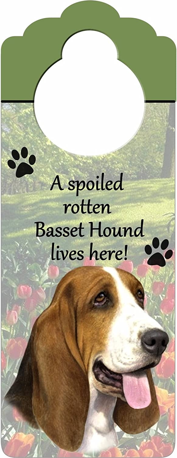 "Basset Hound Wood Sign ""A Spoiled Rotten Basset Hound Lives Here""with Artistic Photograph Measuring 10 by 4 Inches Can Be Hung On Doorknobs Or Anywhere In Home"