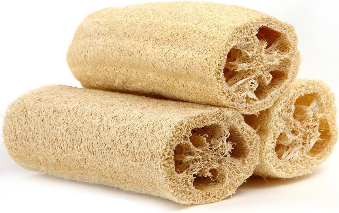 Amazon.com: Natural Loofah Exfoliating Bath Sponge by Spa Destinations (3  Pack of 4