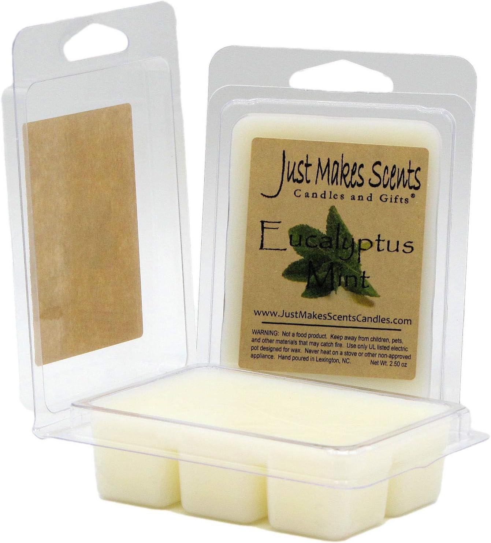Eucalyptus Mint Soy Wax Melts