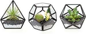 Mkono 3 Packs Mini Glass Geometric Terrarium Container Modern Tabletop Planter Window Sill Decor DIY Display Box Centerpiece Gift for Succulent Fern Moss Cacti Air Plants Miniature Fairy Garden, Black
