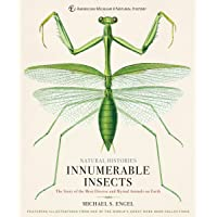 Innumerable Insects: The Story of the Most Diverse and Myriad Animals on Earth