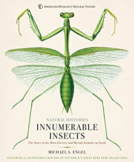 Amazon com: Microsculpture: Portraits of Insects