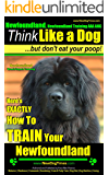 Newfoundland, Newfoundland Training AAA AKC: | Think Like a Dog, But Don't Eat Your Poop! | Newfoundland Breed Expert Training |: Here's EXACTLY How To Train Your Newfoundland