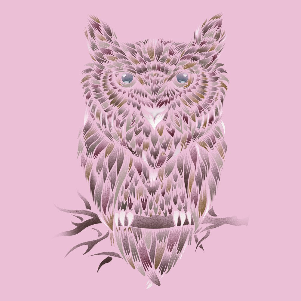 WILD OWL Girls Youth Graphic T Shirt Design By Humans