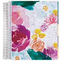 Erin Condren 12 Month 2017 Life Planner - Watercolor Floral Horizontal Colorful, Colorful Interior (AMA-12M 2017 33)