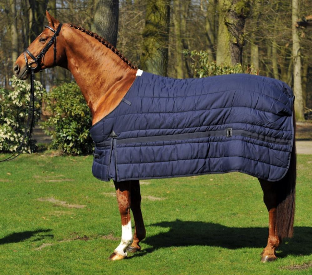 bluee back length 145 cm bluee back length 145 cm Hkm 002067-60-Full Newport