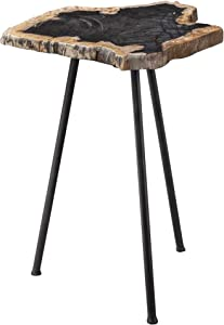MY SWANKY HOME Elegant Minimalist Natural Petrified Wood Accent Table Stone Slab Black Tripod