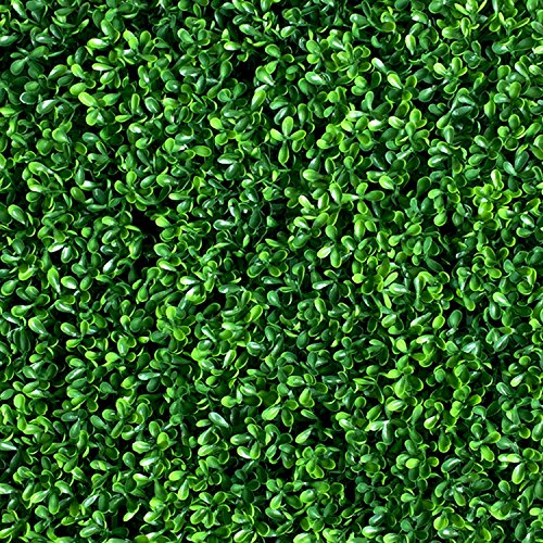 BesameNature 12 Piece Artificial Boxwood Panels, UV Protected Hedge Fence Greenery Panels for Outdoor or Indoor Decoration Panels, 20'' L x 20'' W by BesameNature
