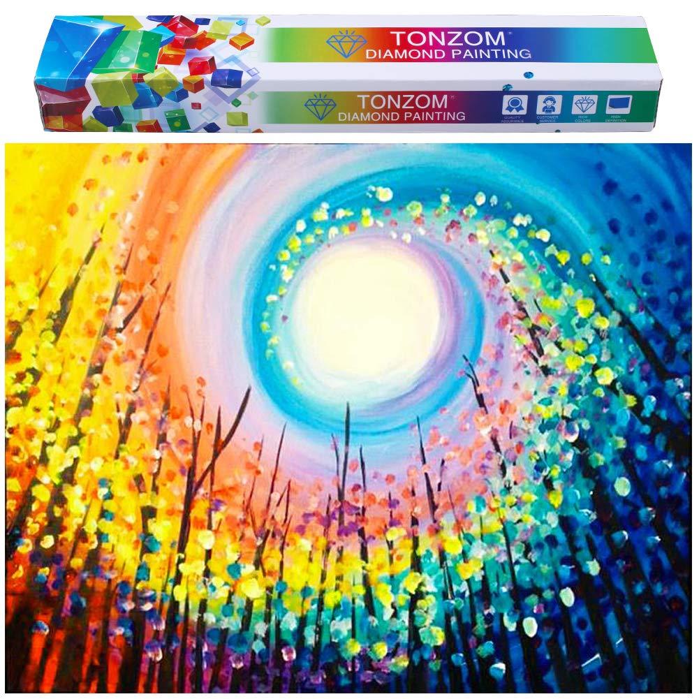 Pintura por Diamantes 30x40cm Kit Completo [86BQFX6N]
