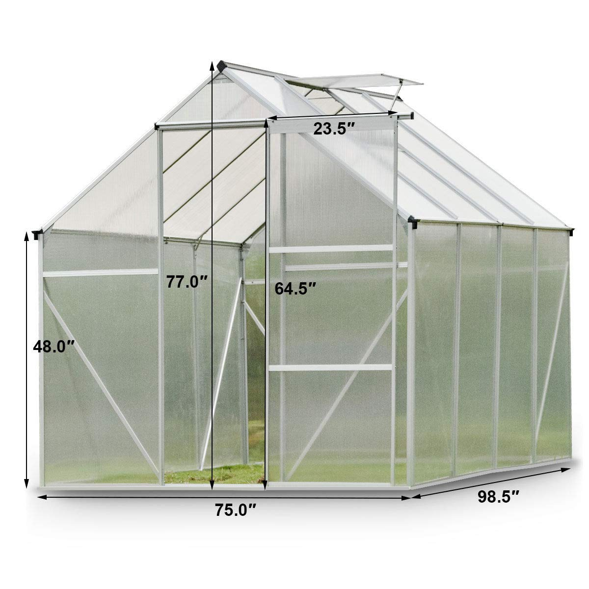 9TRADING 6.2'L x 8.2'D Walk-in Greenhouse Heavy Duty Polycarbonate Aluminum Frame,Free Tax,Delivered Within 10 Days