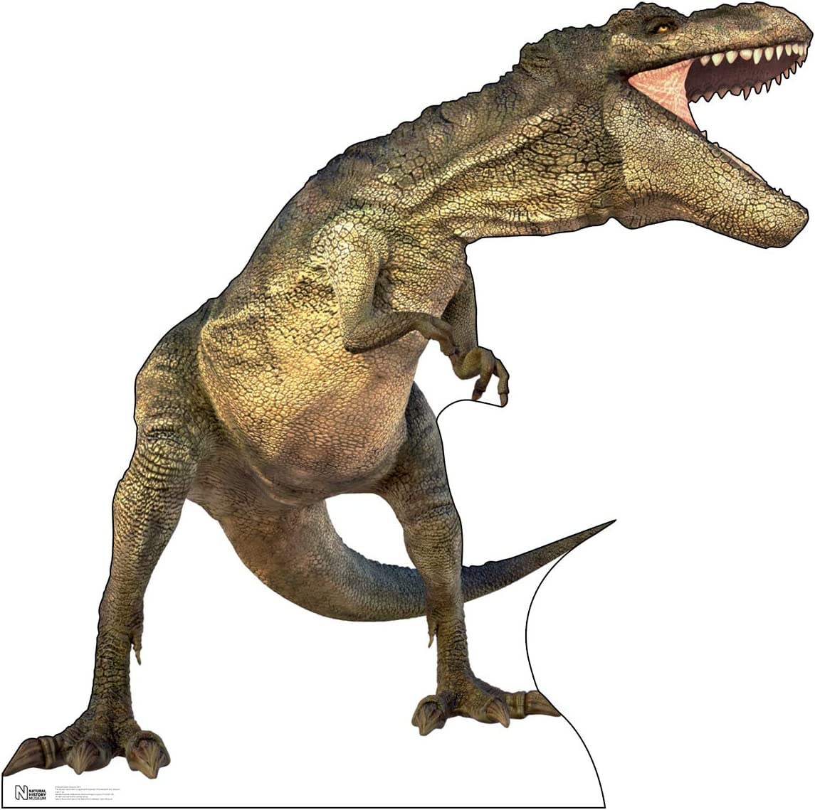 Advanced Graphics Tyrannosaurus Rex Life Size Cardboard Cutout Standup - Natural History Museum