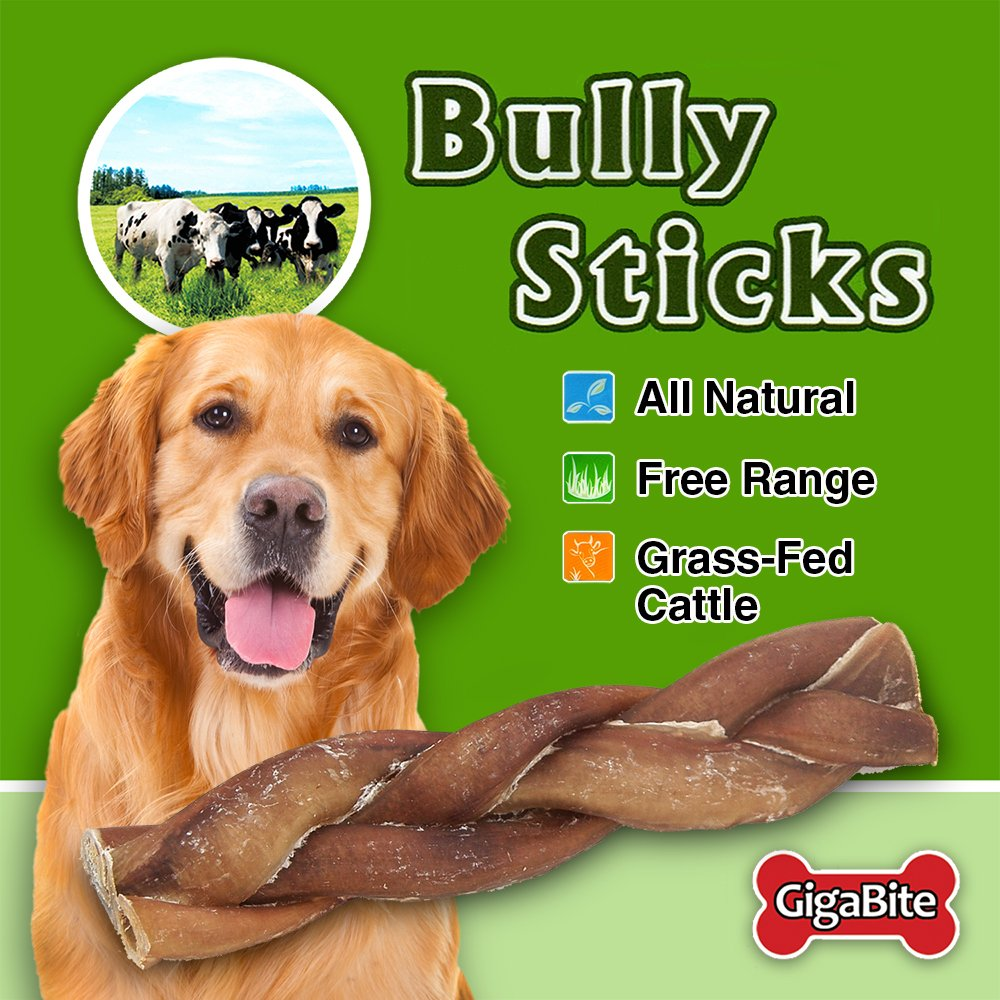 GigaBite 6 Inch Odor-Free Braided Bully Sticks (1-Pound) - USDA & FDA Certified All Natural, Free Range Beef Pizzle Dog Treat - by Best Pet Supplies by Best Pet Supplies, Inc. (Image #3)