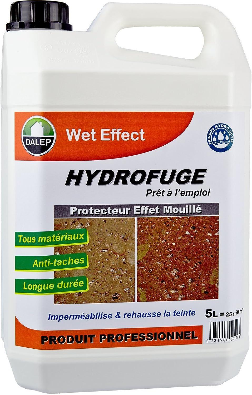 Wet effect - protecteur effet mouillé DALEP - 5 Litres 29639