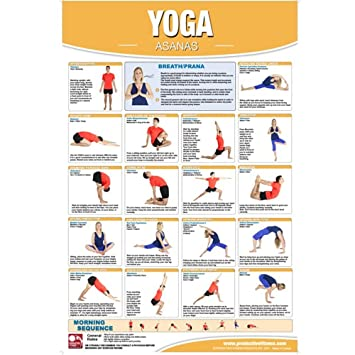 Productive Fitness Poster Series - Yoga Exercises | Laminated or Non-Laminated