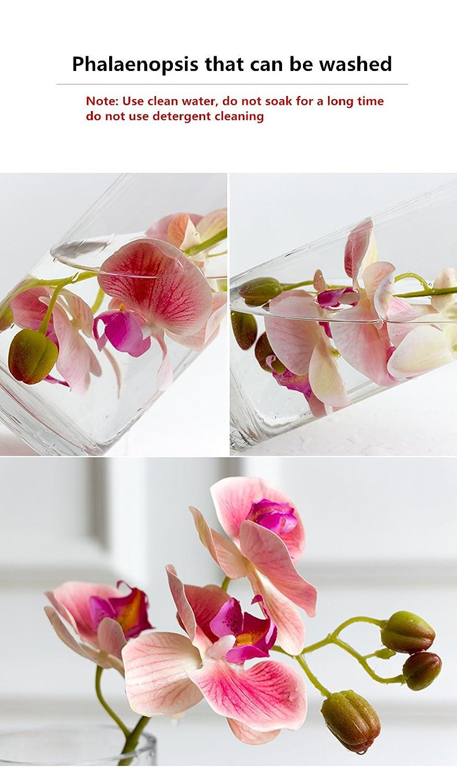 Amazon.com: Lucy Home & Simulation Set Ornaments Phalaenopsis Silk ...