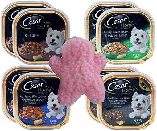 Cesar Home Delights Small Breed Dog Food 4 Flavor 8 Can with Toy Bundle, 2 each Beef Stew, Turkey Green Beans Potatoes, Pot Roast Spring Vegetable, Grilled Porterhouse Steak Bacon Cheese 3.5 Ounces