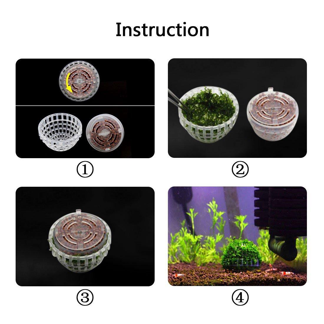 Amazon.com : ZCHXD Plastic Aquarium Shrimp Fish Tank Moss Ball Holder Live Plant Shaping Decor : Pet Supplies