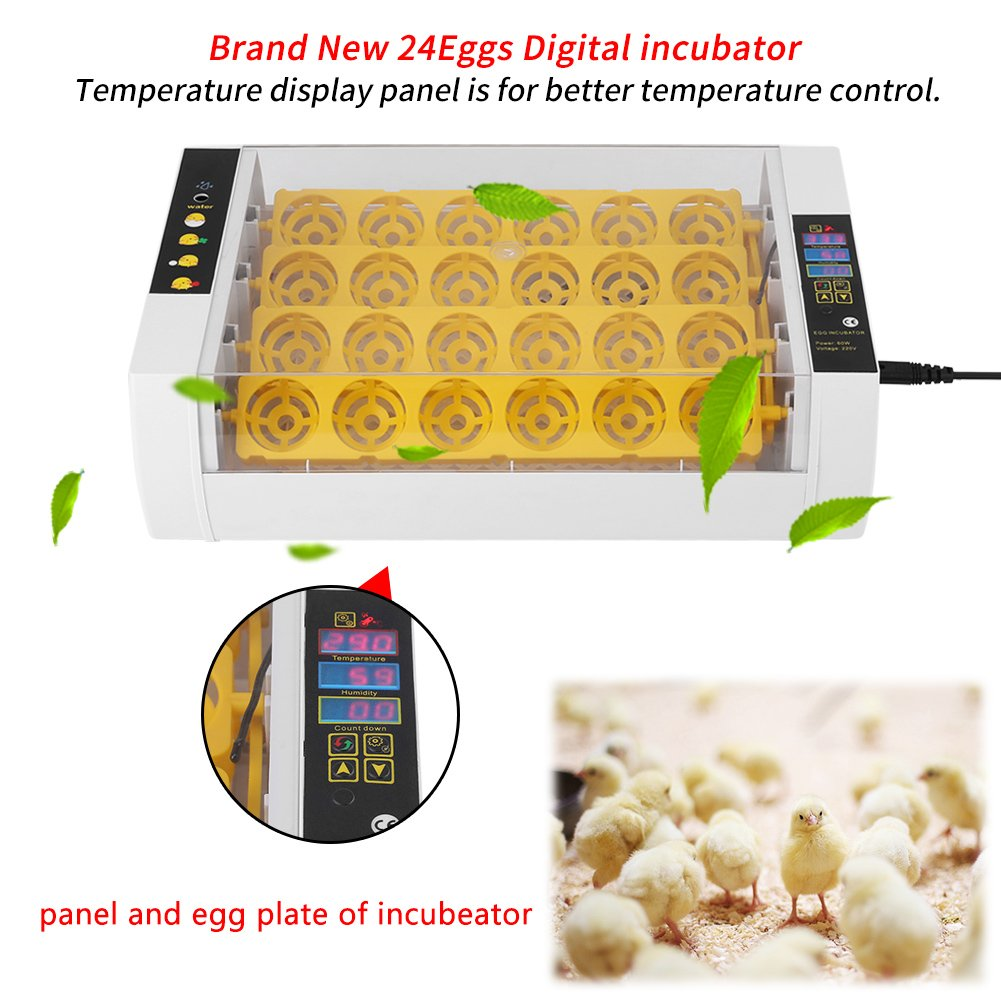 Yosoo Incubator Hatcher-24 Digital Clear Egg Turning Incubator Hatcher Automatic Temperature Control Energy-Saving Egg Incubator by Yosoo