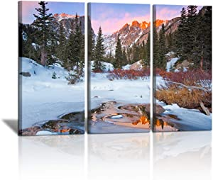 """3 Piece Winter Canvas Painting Wall Art Snowfield Tree Forest Pictures Rocky Mountain National Park Poster Print Artwork Wall Decor for Living Room Easy to Hang 16""""x32""""x3 PCS"""