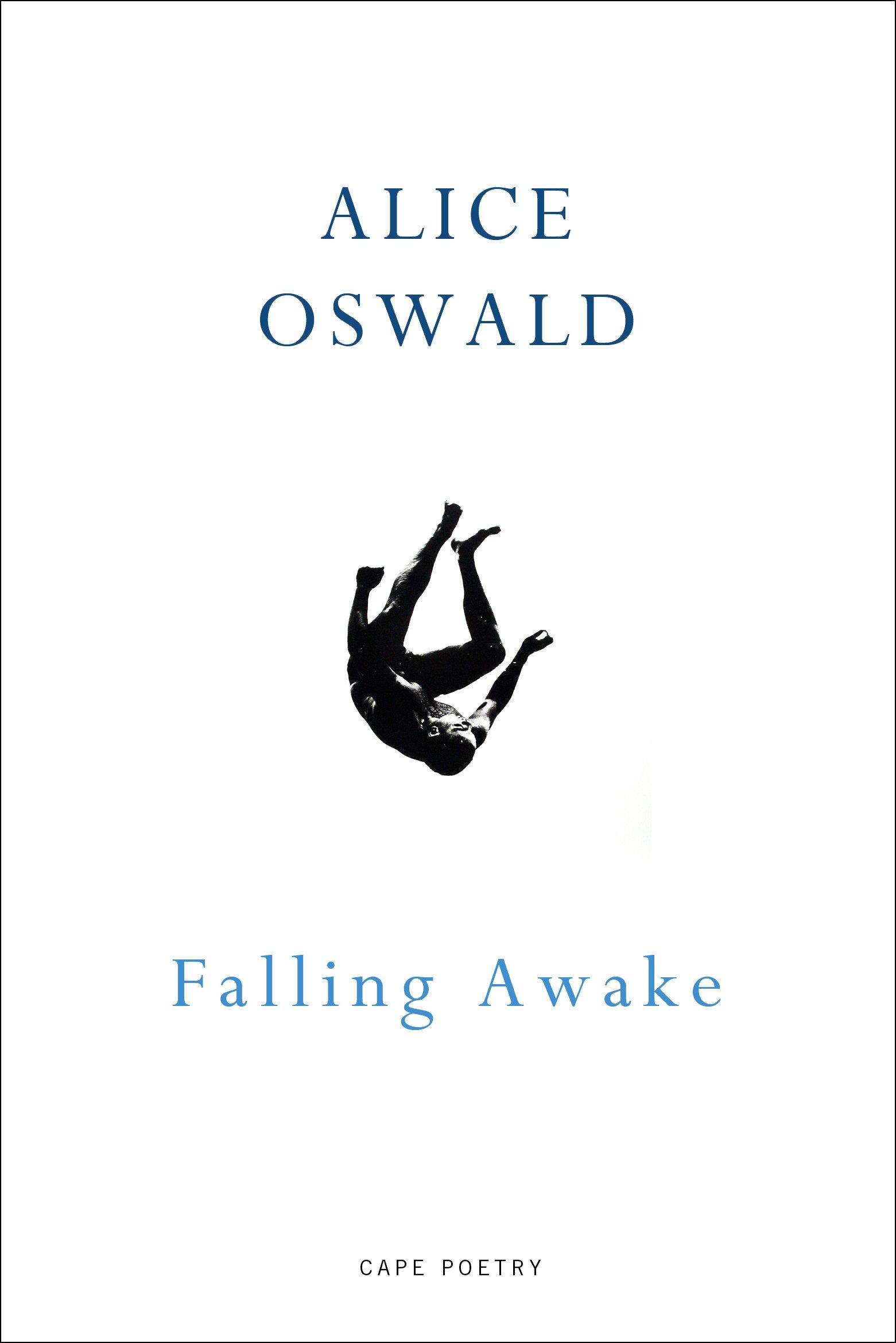 Falling Awake  English Edition