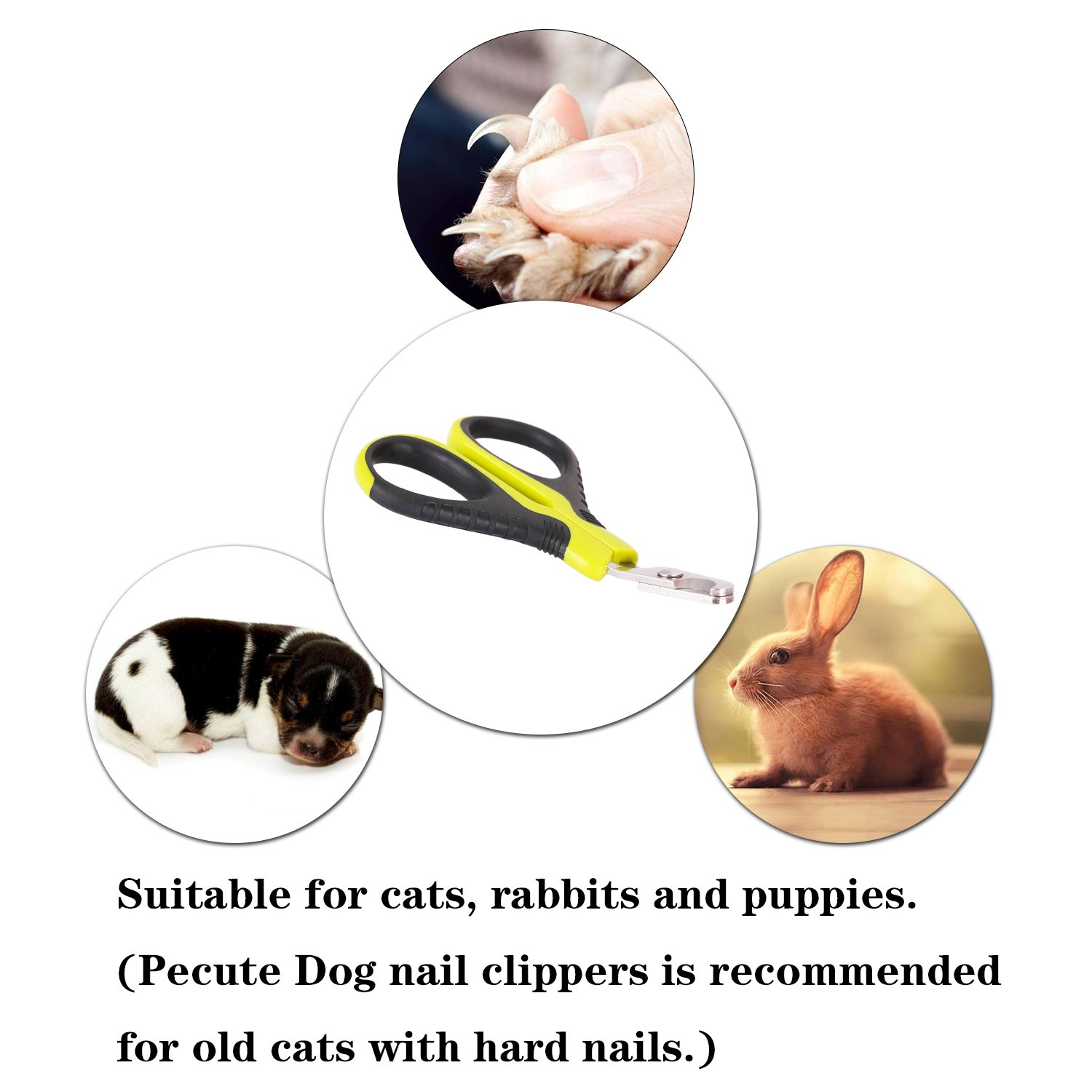 Pecute Cat Nail Clippers Pet Nail Trimmers Sharp Stainless Steel Professional for Cat,Small Breed Dog, Rabbit and Small Animals